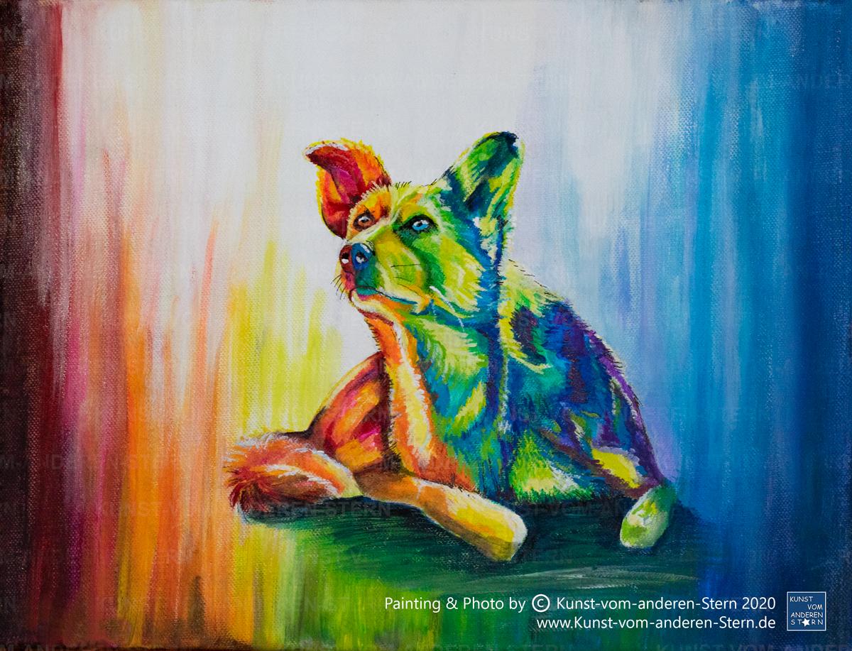 Dein Hund  – Dein Kunstwerk